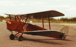 Free flight Tiger Moth model